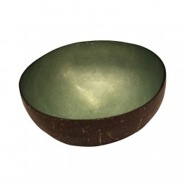 Mint Lacquered Coconut Bowl